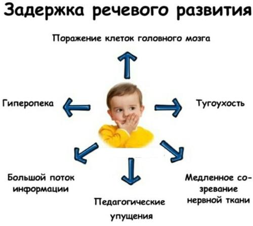Системное недоразвитие речи (СНР). Что это при умственной отсталости, ЗПР тяжелой средней, легкой степени