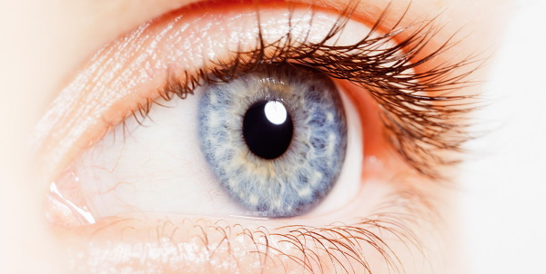 Аккомодация глаза в офтальмологии. Что это такое