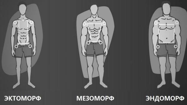 Типы фигур у мужчин. Фото, названия