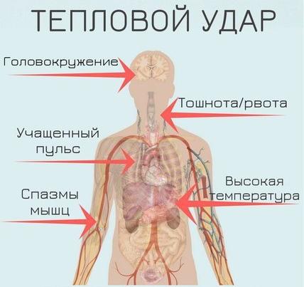 Смертельная температура для человека высокая, низкая при болезни