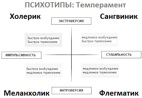 Типология личности в психологии. Что это кратко, тесты